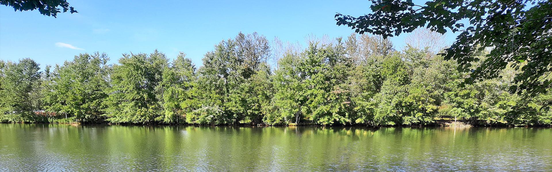 Chestnut Lake Campground - Header
